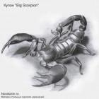 """Кулон объемный """"Big Scorpion"""" из стали со стальной цепочкой"""